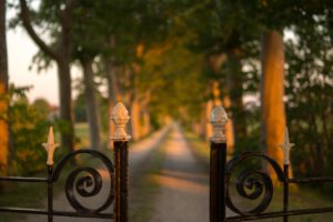 Wrought Iron fence and a road